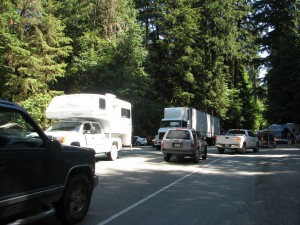 Traffic and parking at Cathedral Grove
