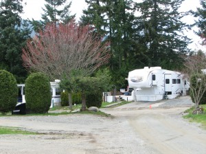 RV Park on Vancouver Island
