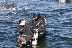 Diving on Vancouver Island