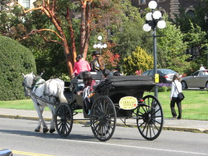 Horsedrawn carriage ride in Victoria, Vancouver Island