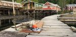 Telegraph Cove Marina & RV Park  Volunteer Camp Host