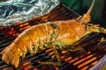 A Guide to Cooking Lobster Tails on a BBQ (Without Ruining Them)